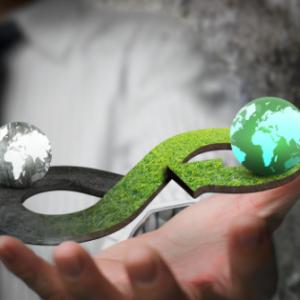 La Economía Circular y el Respeto por la Vida