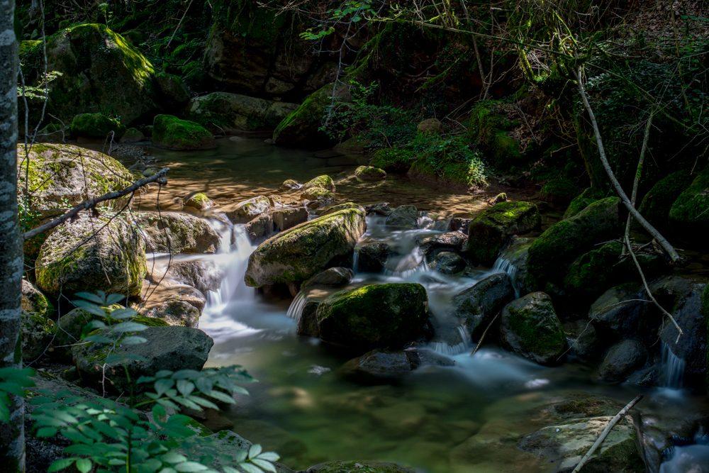 Rio transparente ente piedras