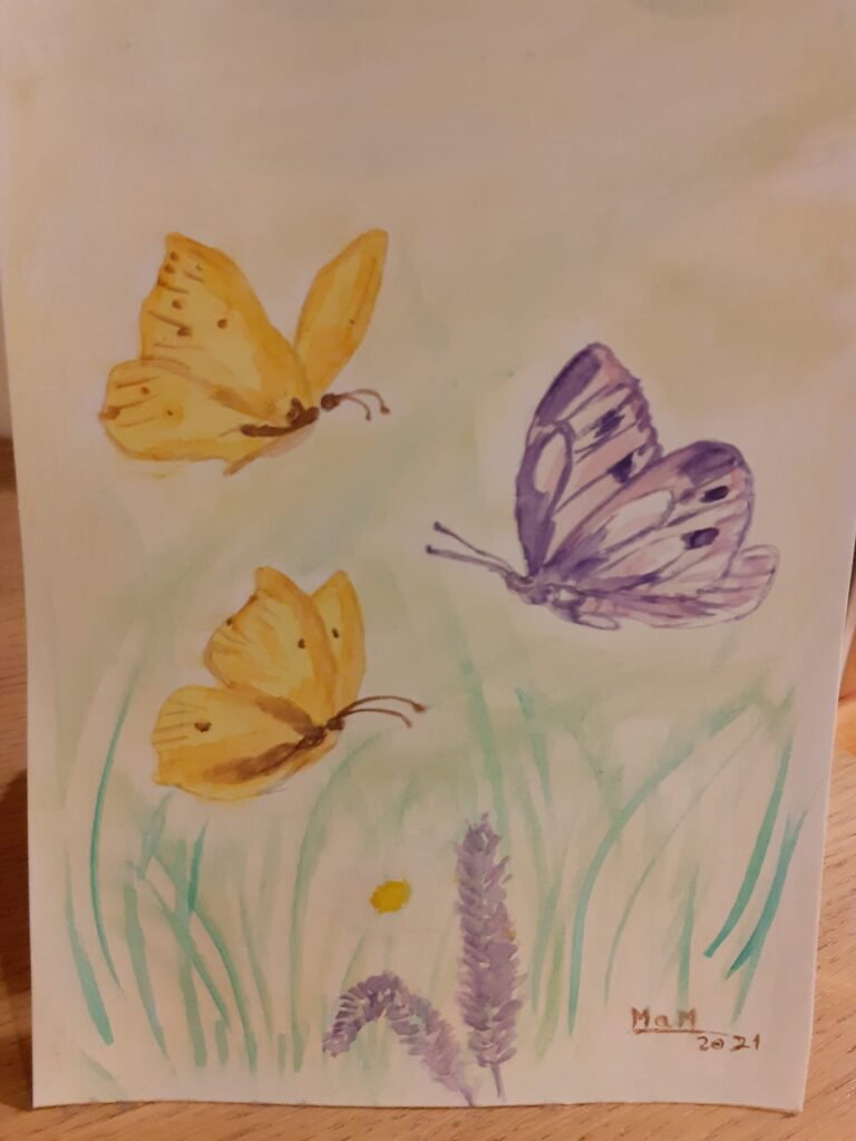 Mariposa dibujadas haiku